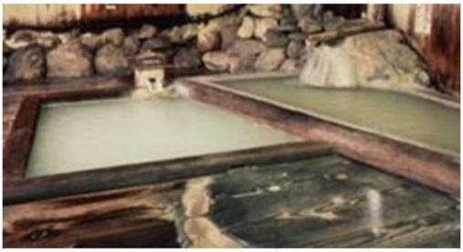 栃木県,塩原元湯温泉,えびすや
