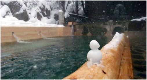栃木県,板室温泉,幸乃湯温泉